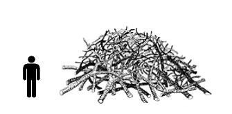 Large Brush Pile