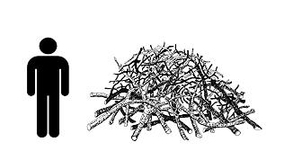 Medium Brush Pile